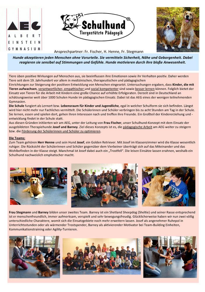 Schule mit Schulhunden